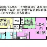 ☆南西向き角部屋(間取)